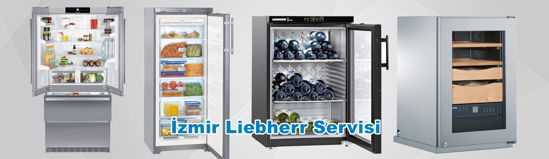 İzmir Liebherr Servisi